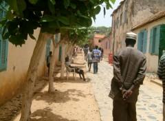 Wallpapers Trips : Africa île de Gorée
