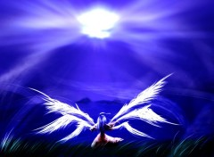 Fonds d'écran Manga ange zen