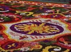 Fonds d'écran Voyages : Europe Tapis de fleurs à Bruxelles