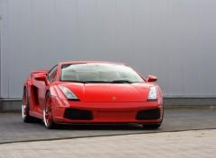 Fonds d'écran Voitures Lamborghini Gallardo GTV Red IMSA (2007)