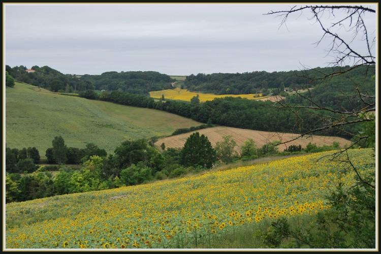 Wallpapers Nature Landscapes Paysage du Lot-et-Garonne