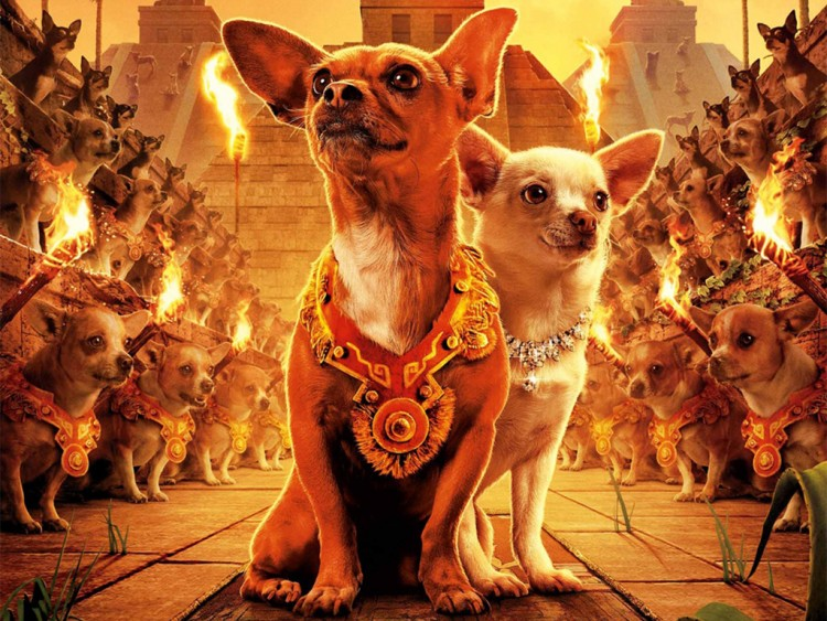 Wallpapers Movies Wallpapers Beverly Hills Chihuahua Le Chihuahua
