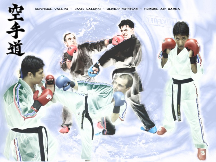 Wallpapers Sports Leisures Wallpapers Karate Wall Karate