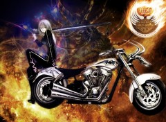 Wallpapers Motorbikes 150 ans Harley Davidson