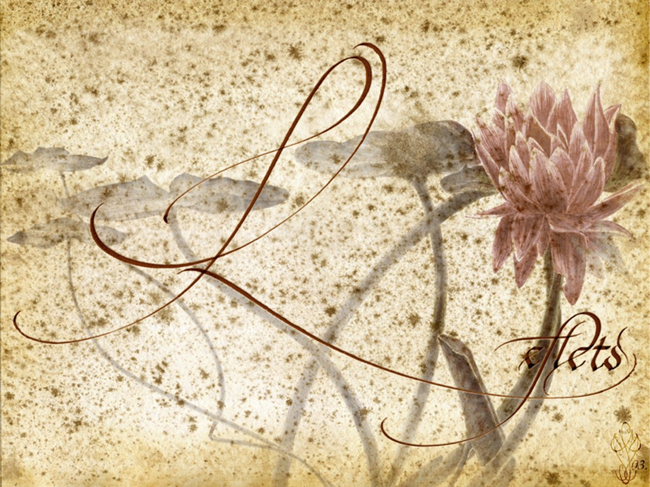 Fonds d'écran Art - Peinture Fleurs Reflets