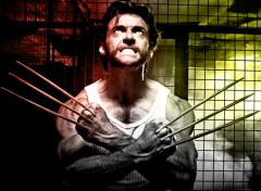 Fonds d'écran Cinéma X-Men Origins: Wolverine