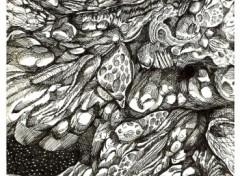 Fonds d'écran Art - Crayon Univers Tordu