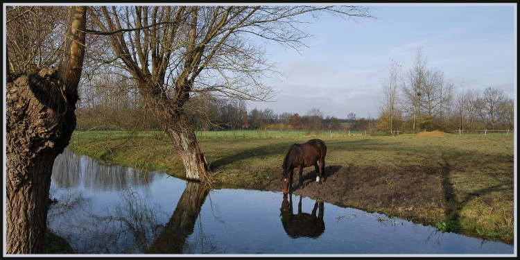 Wallpapers Nature Rivers - Torrents La Somme à 200m de sa source