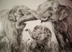 Wallpapers Art - Pencil Jeu De Trompes Indiennes