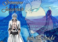 Fonds d'écran Manga Grimmjow Jaggerjack by rtk12