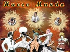 Fonds d'écran Manga Hueco Mundo