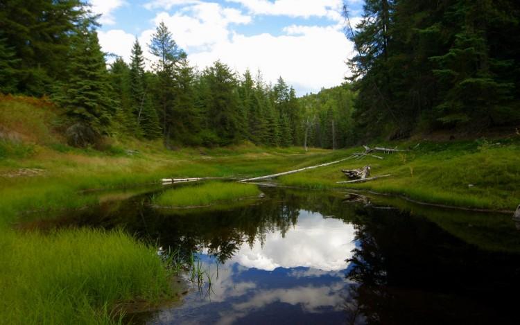 Fonds d'écran Nature Lacs - Etangs L'etang