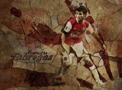 Wallpapers Sports - Leisures Cesc Fabregas