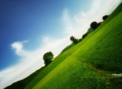 Wallpapers Nature Vert et bleu