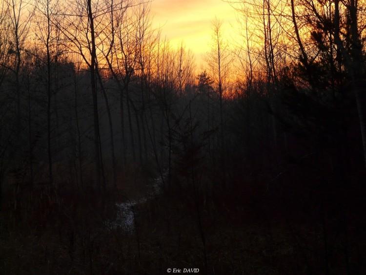 Wallpapers Nature Saisons - Winter Un sentier en hiver