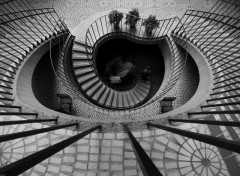 Wallpapers Constructions and architecture Escalier noir et blanc