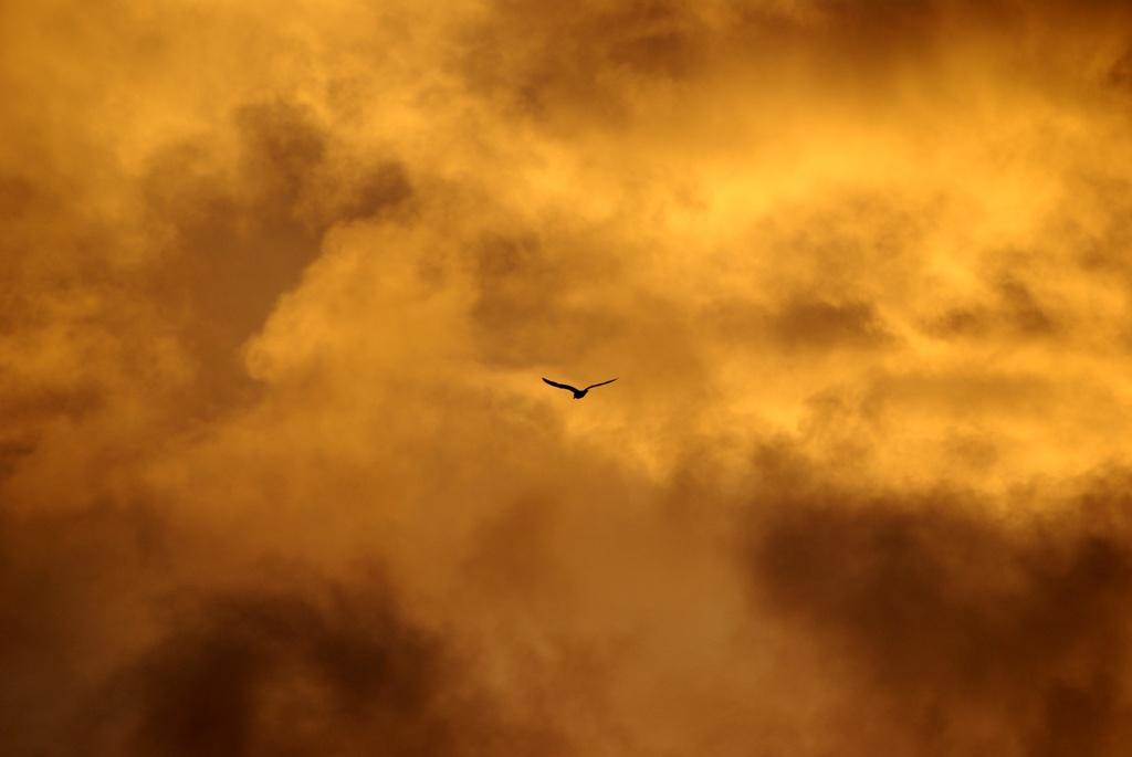 Fonds d'écran Nature Ciel - Nuages nuage en feu