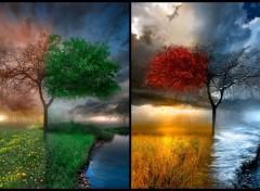 Fonds d'écran Art - Numérique Dégradé de saisons