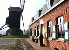 Fonds d'écran Voyages : Europe Moulin de Boeschepe
