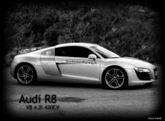Fonds d'écran Voitures Audi R8