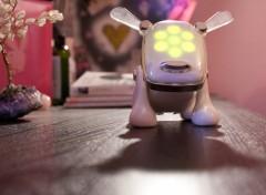 Fonds d'écran Objets Le chien robot