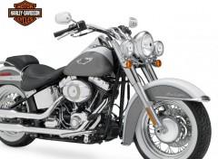 Fonds d'écran Motos Harley Davidson 2008