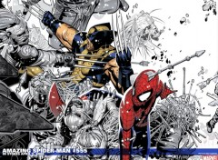 Fonds d'écran Comics et BDs spider man