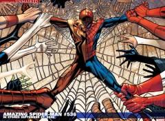 Fonds d'écran Comics et BDs spider man