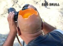 Fonds d'écran Humour egg skull