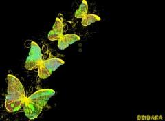 Fonds d'écran Art - Numérique Papillons
