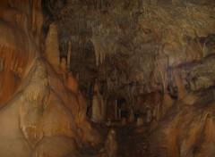 Fonds d'écran Nature la grotte de l'ours