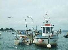 Wallpapers Boats bateau de pêche