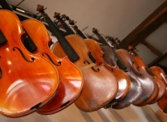 Wallpapers Music Tourne les violons