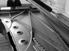 Wallpapers Music ludovico einaudi