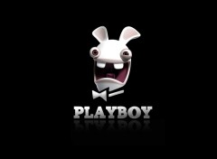 Wallpapers Humor Playboy crétin