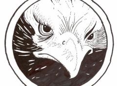 Wallpapers Art - Pencil aigle