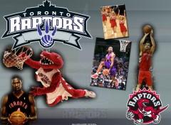 Wallpapers Sports - Leisures Toronto Raptors