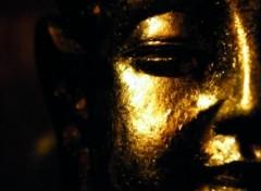Fonds d'écran Objets Statuettes bouddha