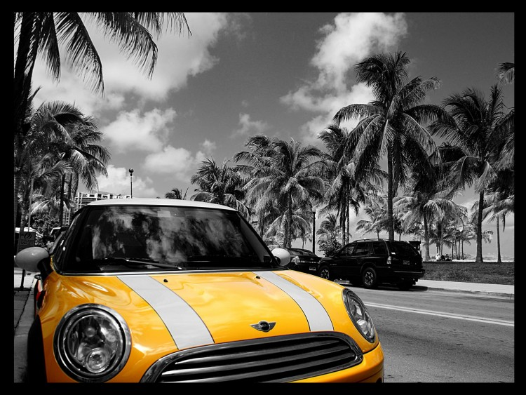 Fonds d'écran Voitures Mini Mini on Miami Beach front drive