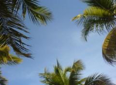 Fonds d'écran Nature Guadeloupe Sky