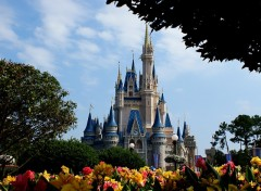 Wallpapers Constructions and architecture Disney World