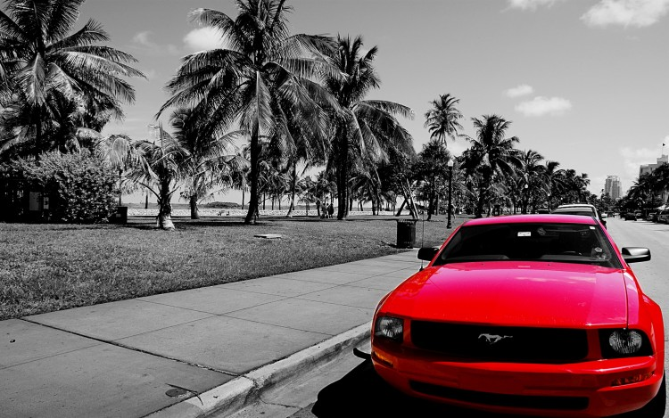Fonds d'écran Voitures Mustang Mustand on Miami Beach Bvd