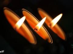 Fonds d'écran Objets Bougies de Noël alignées