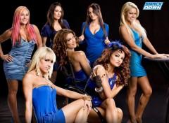 Fonds d'écran Sports - Loisirs Smack Down Divas