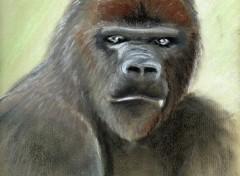 Wallpapers Art - Pencil Gorille