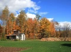 Fonds d'écran Nature Automne aux Québec