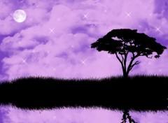 Fonds d'écran Art - Numérique Purple Dream