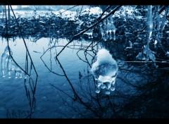 Fonds d'écran Nature hiver stalactites boule glace avec neige et eau paysage