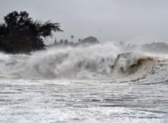 Fonds d'écran Nature avanrt le cyclone