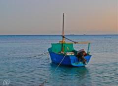 Fonds d'écran Voyages : Afrique mer rouge